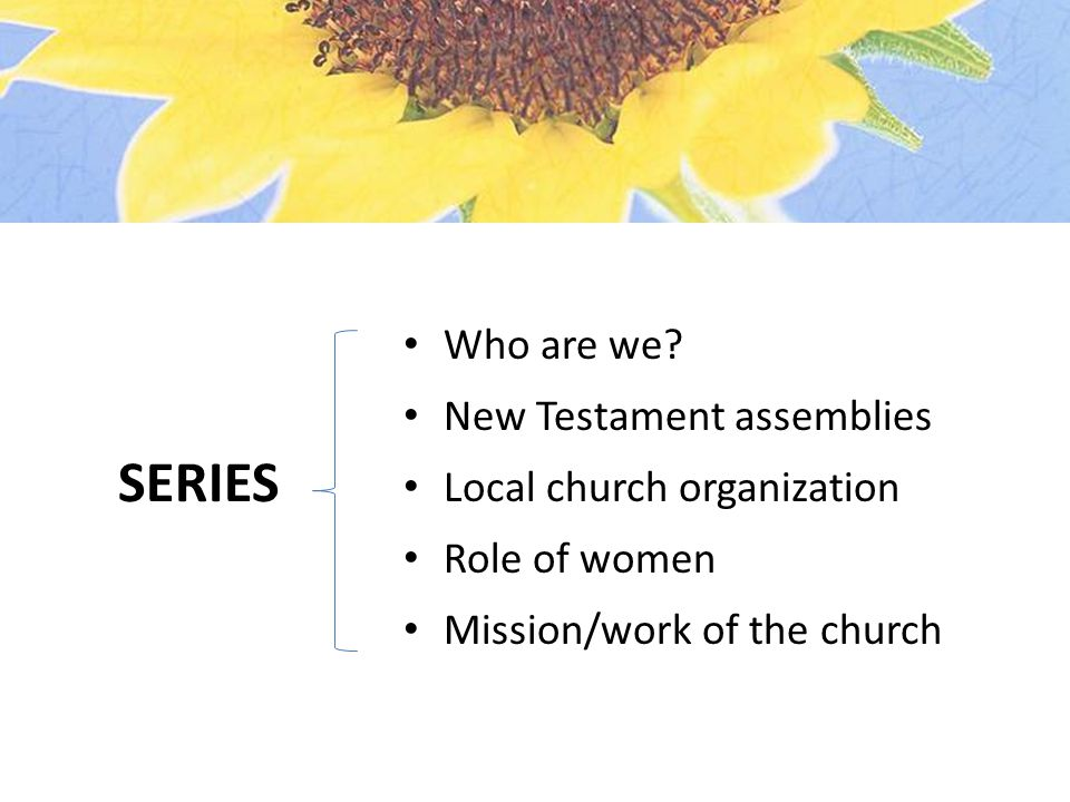 Who are we? New Testament assemblies Local church organization Role of women Mission/work of the church SERIES
