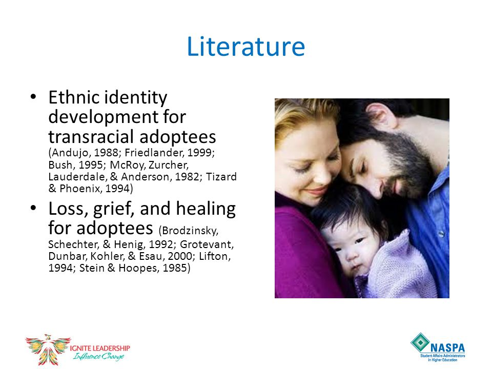 Literature Ethnic identity development for transracial adoptees (Andujo, 1988; Friedlander, 1999; Bush, 1995; McRoy, Zurcher, Lauderdale, & Anderson,