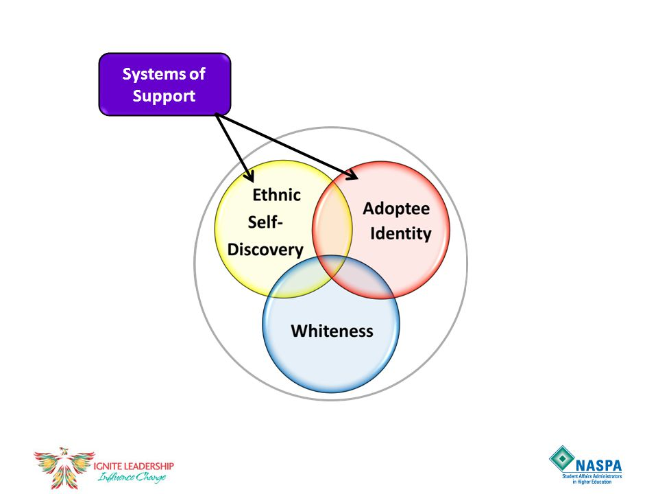 Systems of Support