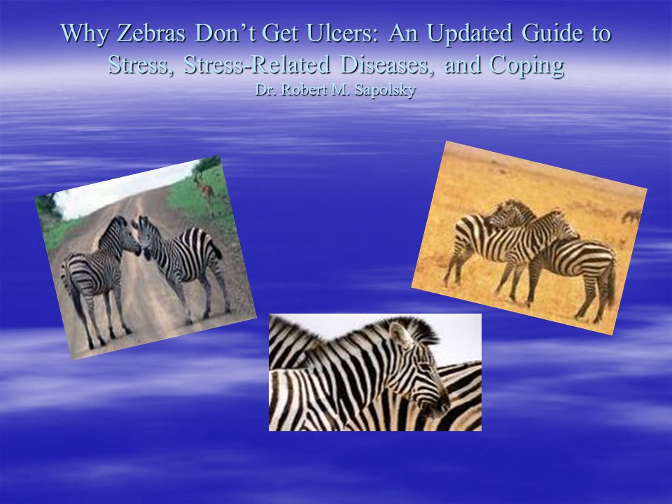 Why Zebras Don't Get Ulcers: An Updated Guide to Stress, Stress-Related Diseases, and Coping Dr.