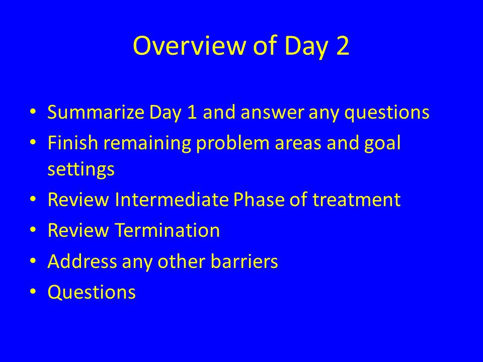 Overview of Day 2 Summarize Day 1 and answer any questions Finish remaining problem areas and goal settings Review Intermediate Phase of treatment Review Termination Address any other barriers Questions