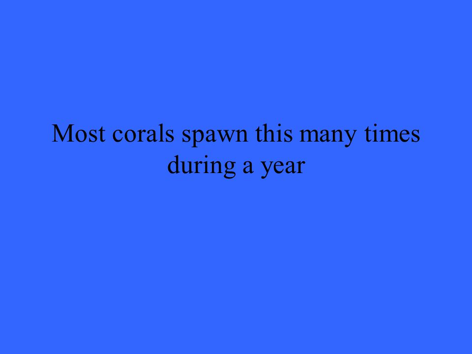 Most corals spawn this many times during a year