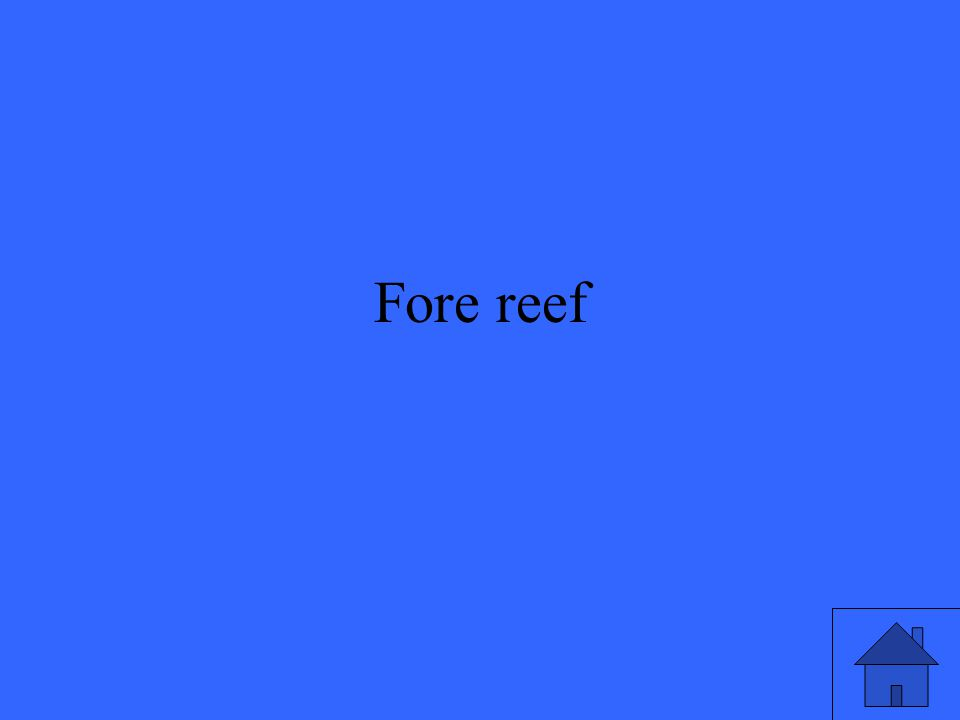Fore reef