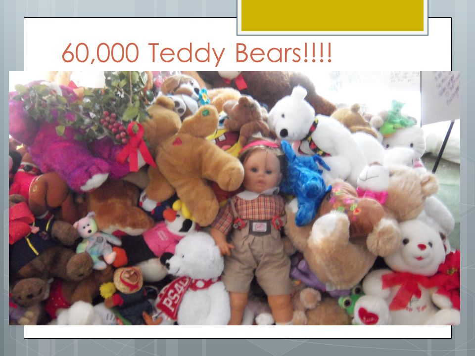 60,000 Teddy Bears!!!!