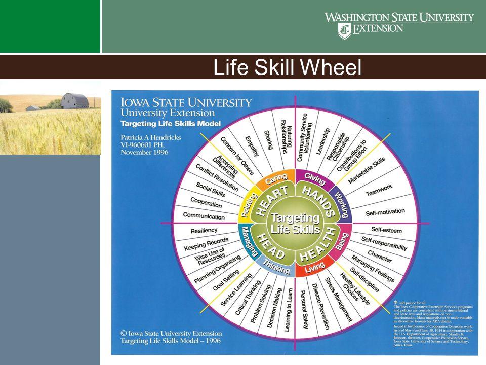 Life Skill Wheel