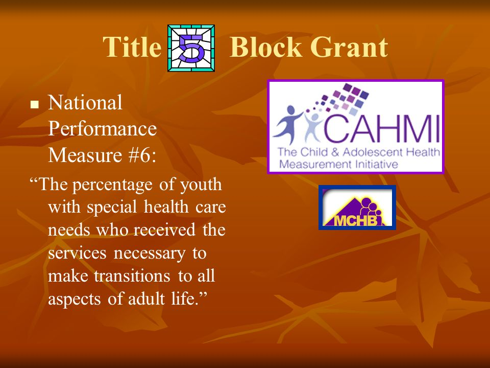 """Title Block Grant National Performance Measure #6: """"The percentage of youth with special health care needs who received the services necessary to make"""
