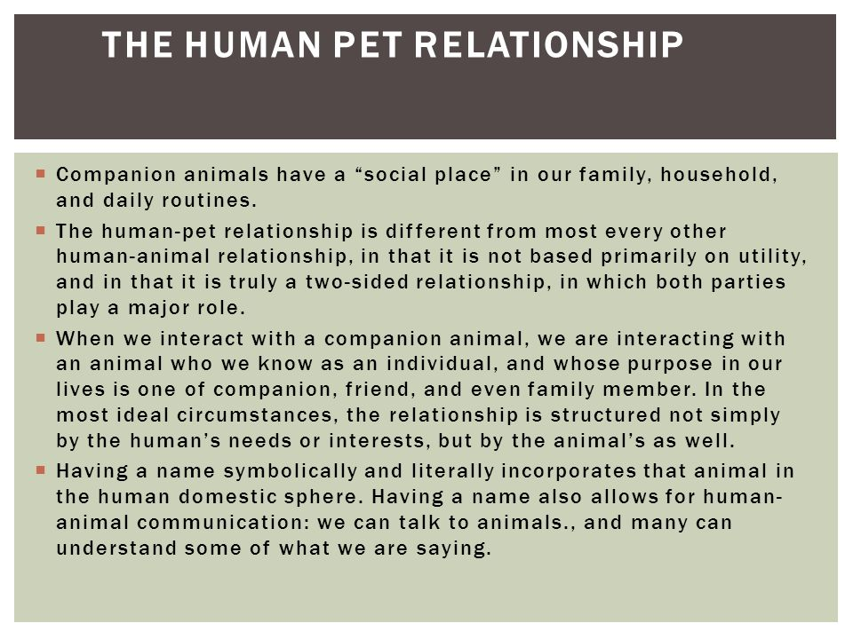 " Companion animals have a ""social place"" in our family, household, and daily routines.  The human-pet relationship is different from most every othe"