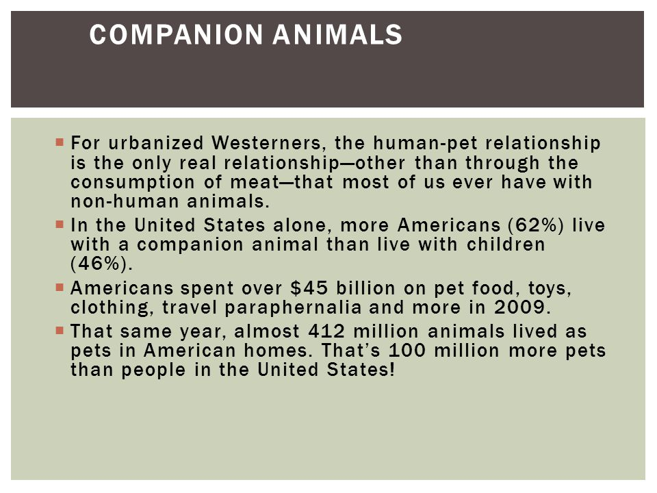  Why do animals have such an important influence on human well being.
