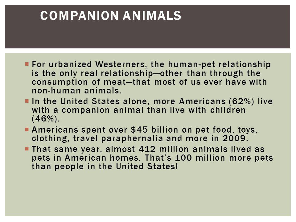 WHAT MAKES A PET A PET?