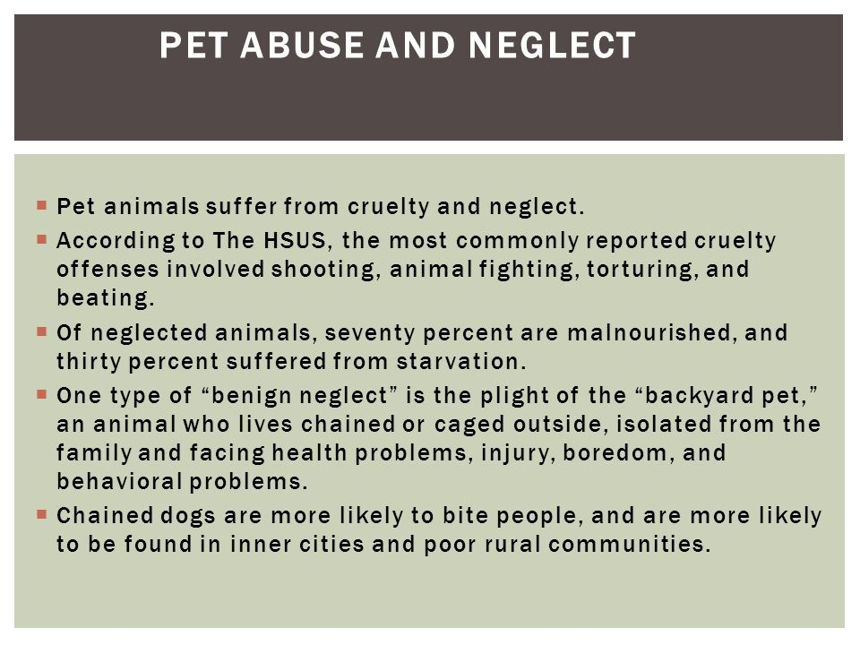  Pet animals suffer from cruelty and neglect.  According to The HSUS, the most commonly reported cruelty offenses involved shooting, animal fighting