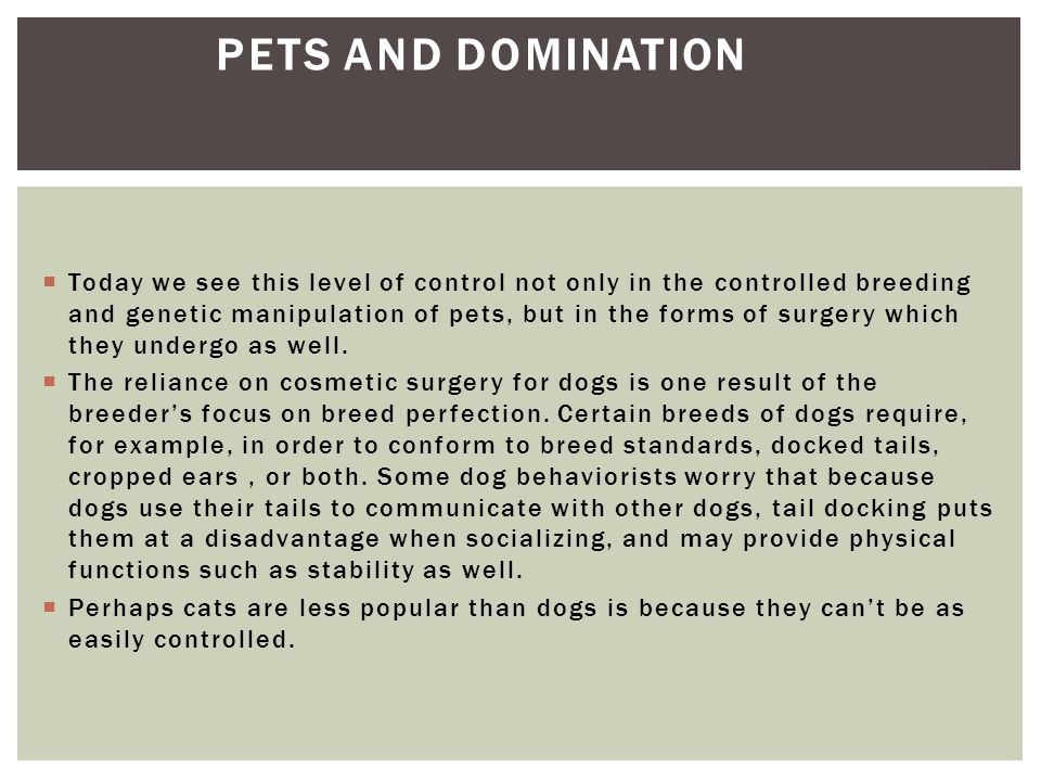  Today we see this level of control not only in the controlled breeding and genetic manipulation of pets, but in the forms of surgery which they unde