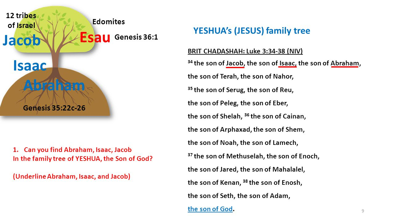 Follow Yeshua (Jesus) Become part of the Family of God Ephesians 2:8-9 Ephesians 2:19-23 You SEED – GOOD SOIL Believe God Matthew 13:1-9 13:16-23 10