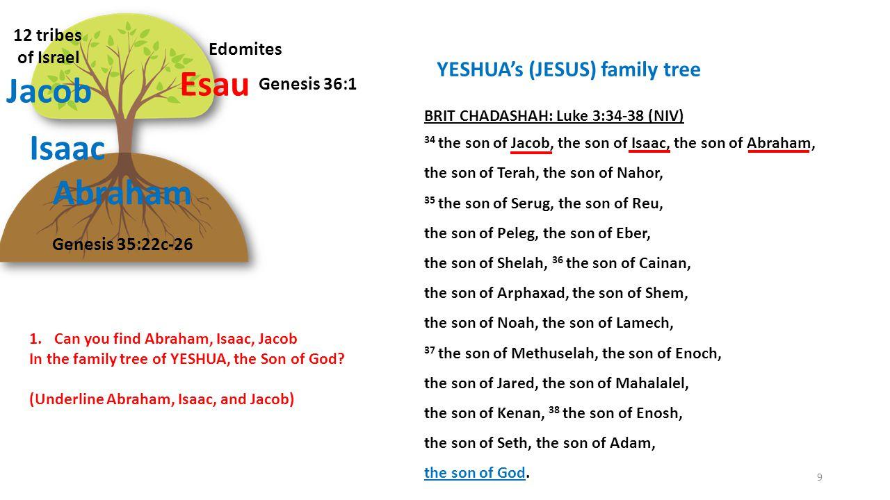 Abraham Isaac Esau Jacob Edomites 12 tribes of Israel Genesis 35:22c-26 Genesis 36:1 9 BRIT CHADASHAH: Luke 3:34-38 (NIV) 34 the son of Jacob, the son of Isaac, the son of Abraham, the son of Terah, the son of Nahor, 35 the son of Serug, the son of Reu, the son of Peleg, the son of Eber, the son of Shelah, 36 the son of Cainan, the son of Arphaxad, the son of Shem, the son of Noah, the son of Lamech, 37 the son of Methuselah, the son of Enoch, the son of Jared, the son of Mahalalel, the son of Kenan, 38 the son of Enosh, the son of Seth, the son of Adam, the son of God.