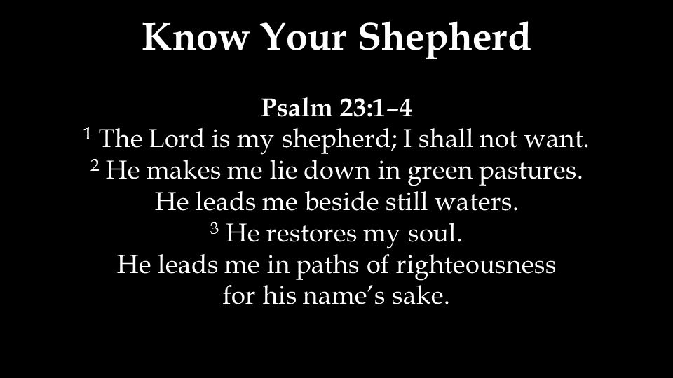 Know Your Shepherd Psalm 23:1–4 1 The Lord is my shepherd; I shall not want. 2 He makes me lie down in green pastures. He leads me beside still waters