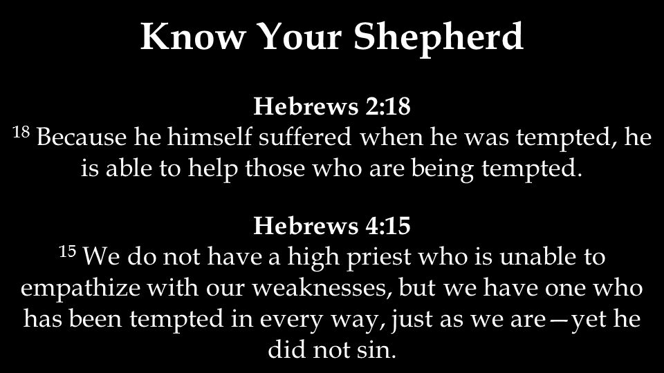 Know Your Shepherd Hebrews 2:18 18 Because he himself suffered when he was tempted, he is able to help those who are being tempted. Hebrews 4:15 15 We