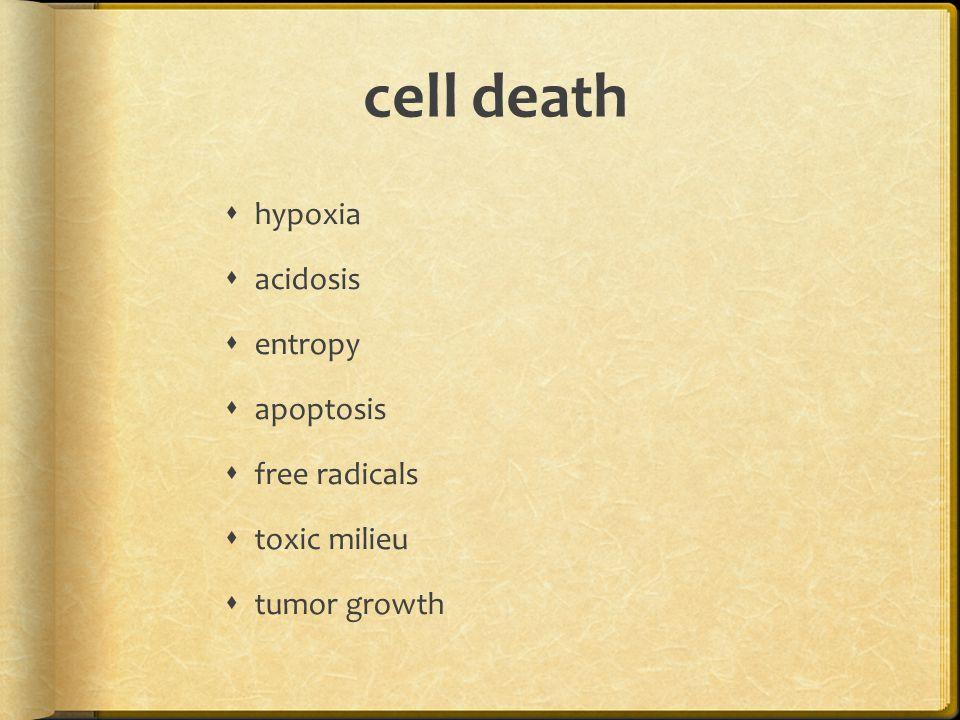 cell death  hypoxia  acidosis  entropy  apoptosis  free radicals  toxic milieu  tumor growth