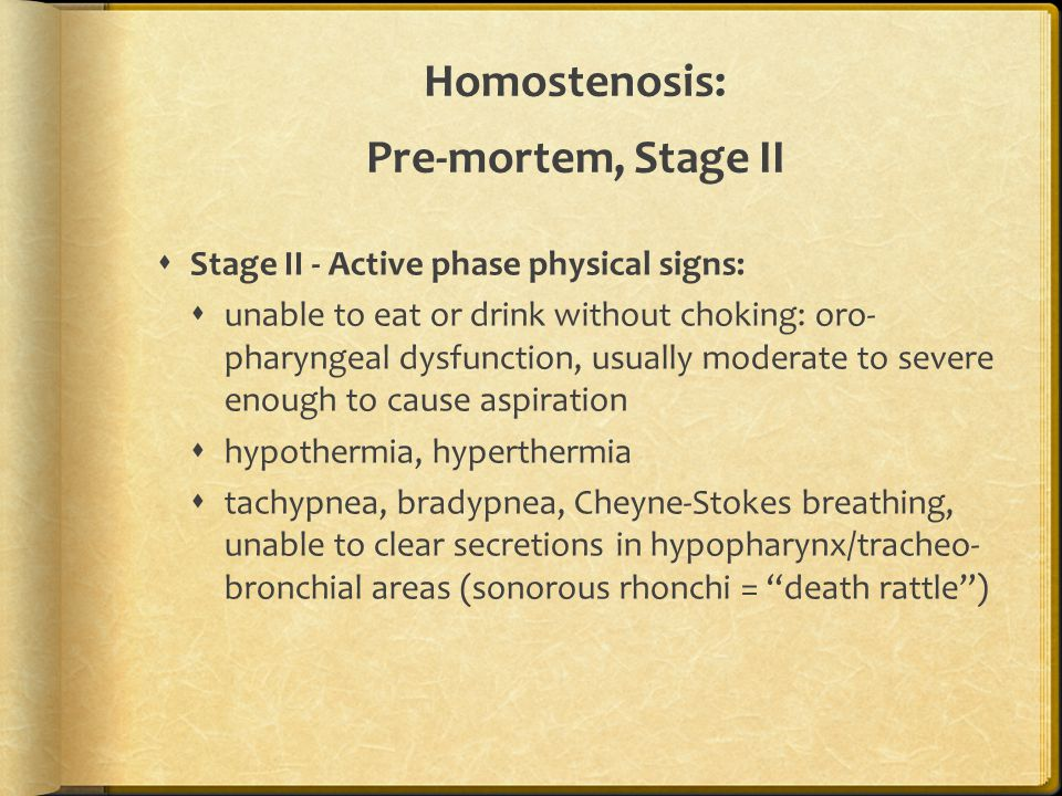 Homostenosis: Pre-mortem, Stage II  Stage II - Active phase physical signs:  unable to eat or drink without choking: oro- pharyngeal dysfunction, us