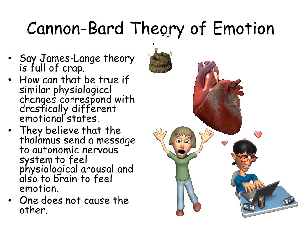 Cannon-Bard Theory of Emotion Say James-Lange theory is full of crap.