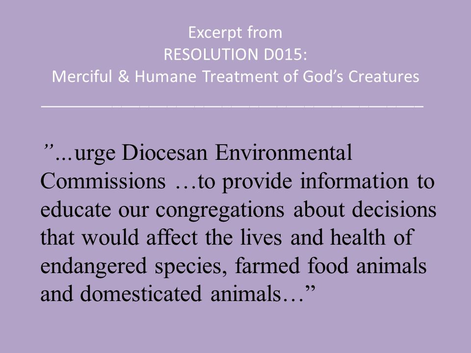 Excerpt from RESOLUTION D015: Merciful & Humane Treatment of God's Creatures __________________________________________ …urge Diocesan Environmental Commissions …to provide information to educate our congregations about decisions that would affect the lives and health of endangered species, farmed food animals and domesticated animals…