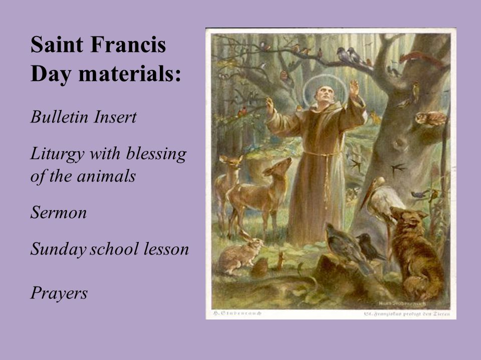Saint Francis Day materials: Bulletin Insert Liturgy with blessing of the animals Sermon Sunday school lesson Prayers