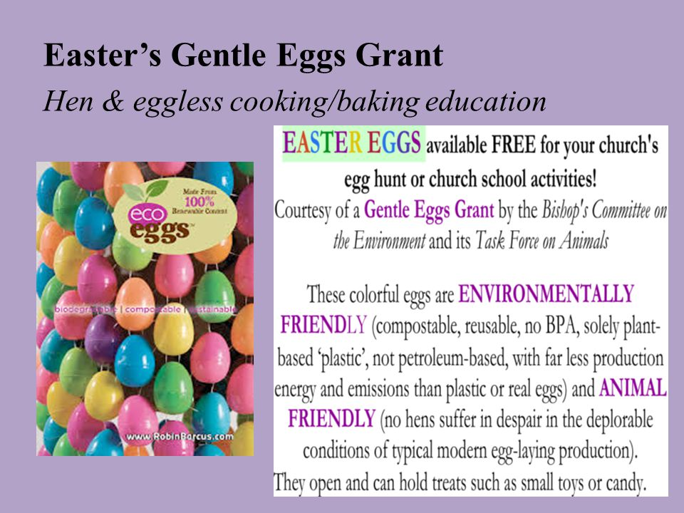 Easter's Gentle Eggs Grant Hen & eggless cooking/baking education