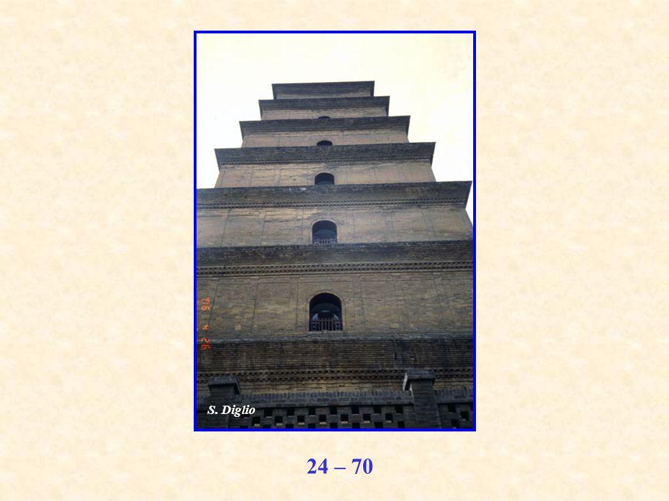 24 – 70 S. Diglio