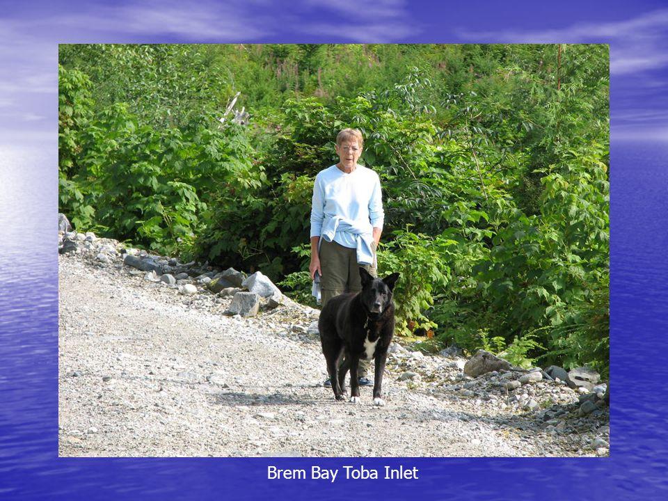 Brem Bay Toba Inlet