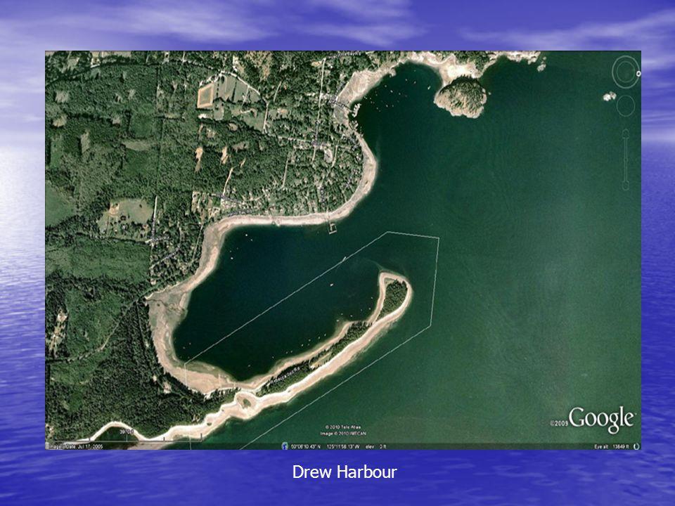 Drew Harbour
