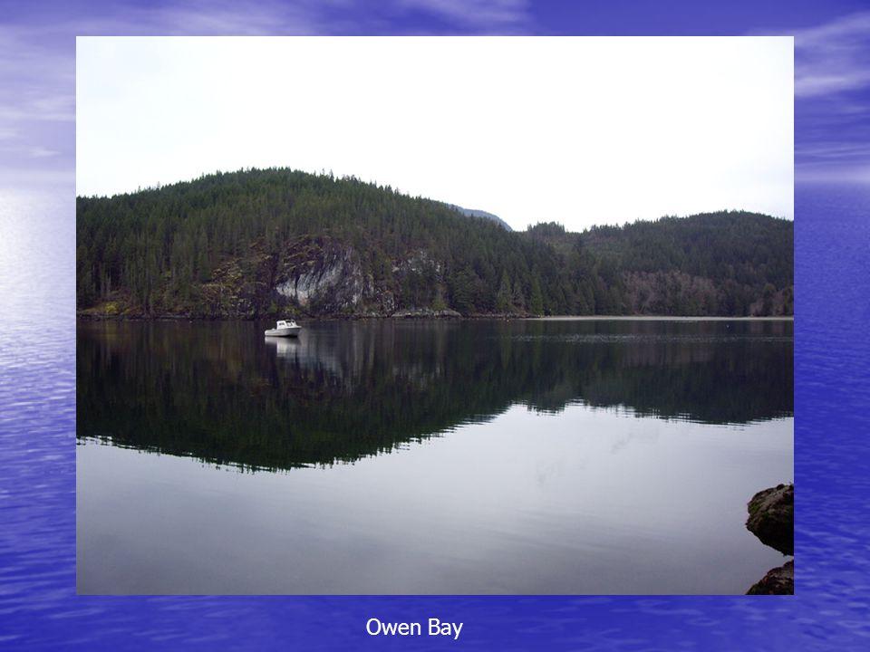 Owen Bay