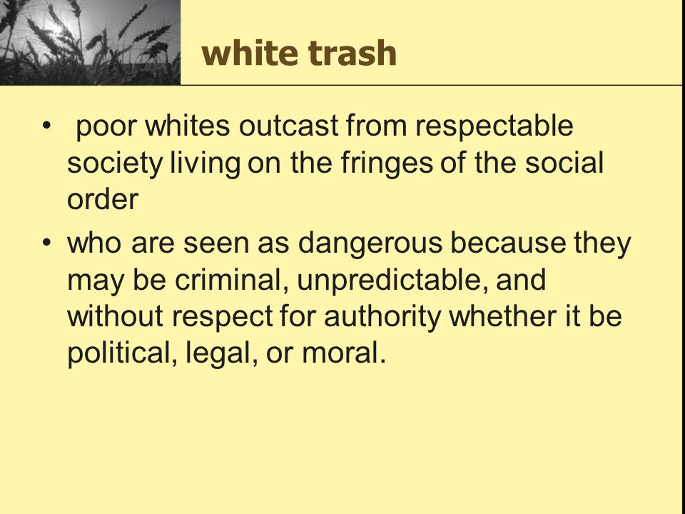 white trash poor whites outcast from respectable society living on the fringes of the social order who are seen as dangerous because they may be crimi