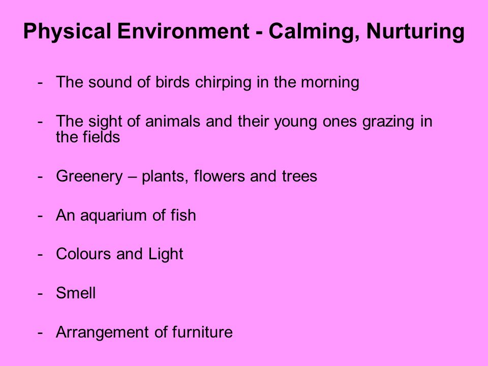 Physical Environment - Calming, Nurturing -The sound of birds chirping in the morning -The sight of animals and their young ones grazing in the fields -Greenery – plants, flowers and trees -An aquarium of fish -Colours and Light -Smell -Arrangement of furniture