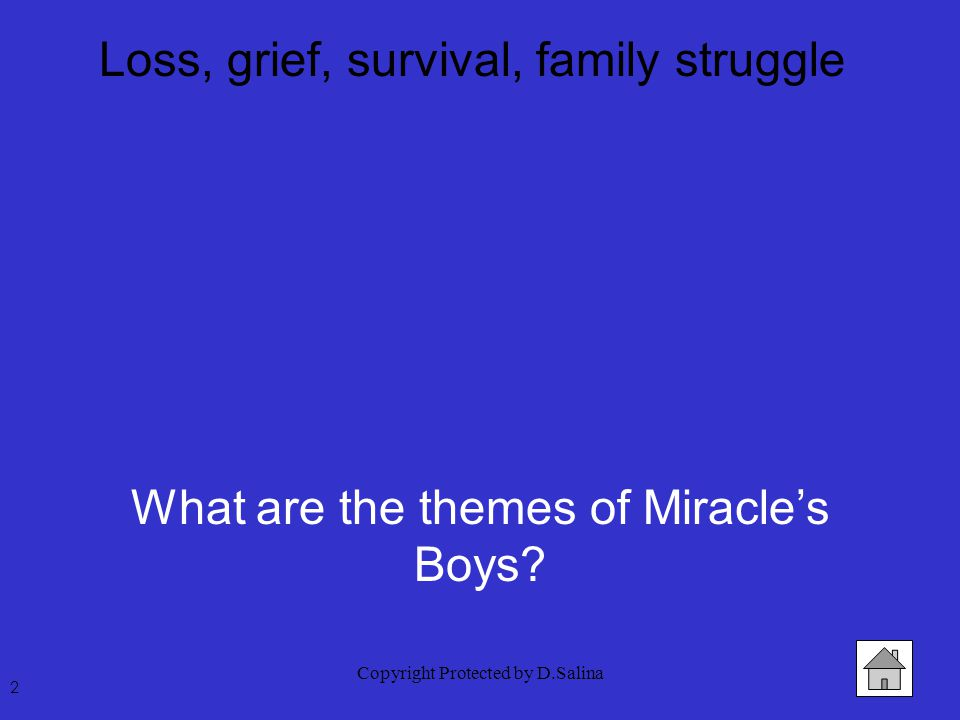 Copyright Protected by D.Salina Loss, grief, survival, family struggle 2 What are the themes of Miracle's Boys?