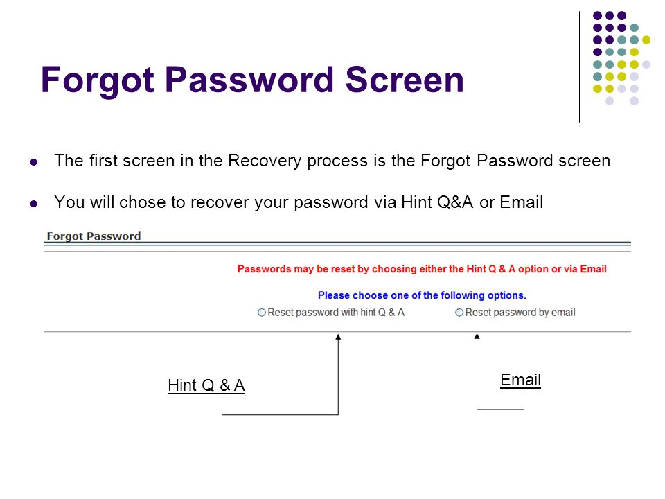 Forgot Password Screen The first screen in the Recovery process is the Forgot Password screen You will chose to recover your password via Hint Q&A or Email Hint Q & A Email