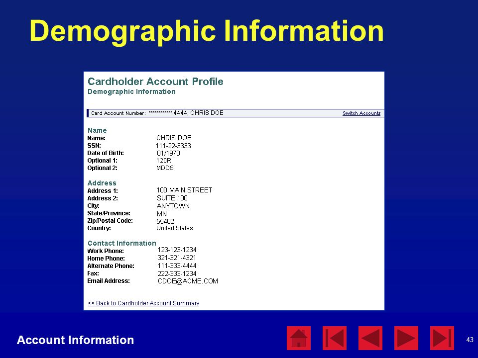 43 Demographic Information Account Information