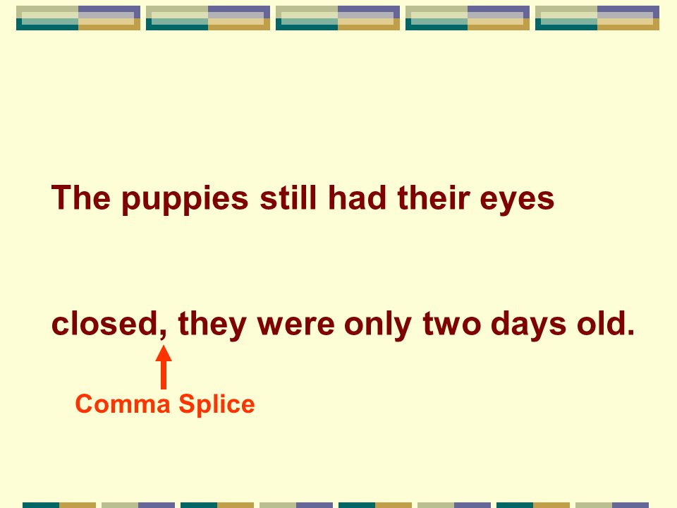 The puppies still had their eyes closed, they were only two days old. Comma Splice