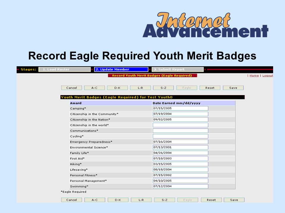 Record Eagle Required Youth Merit Badges