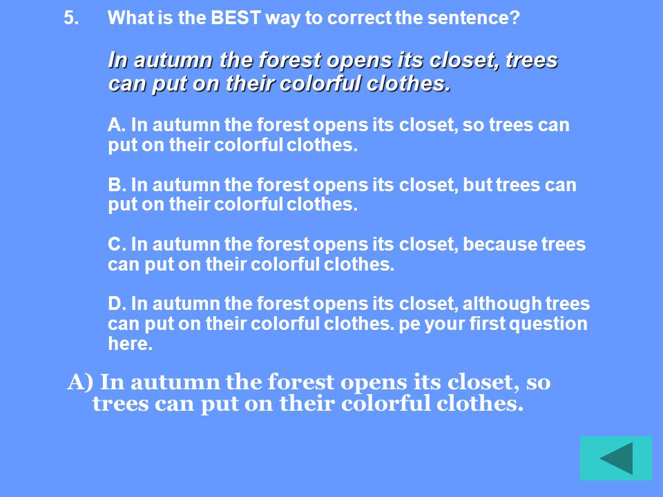 In autumn the forest opens its closet, trees can put on their colorful clothes.