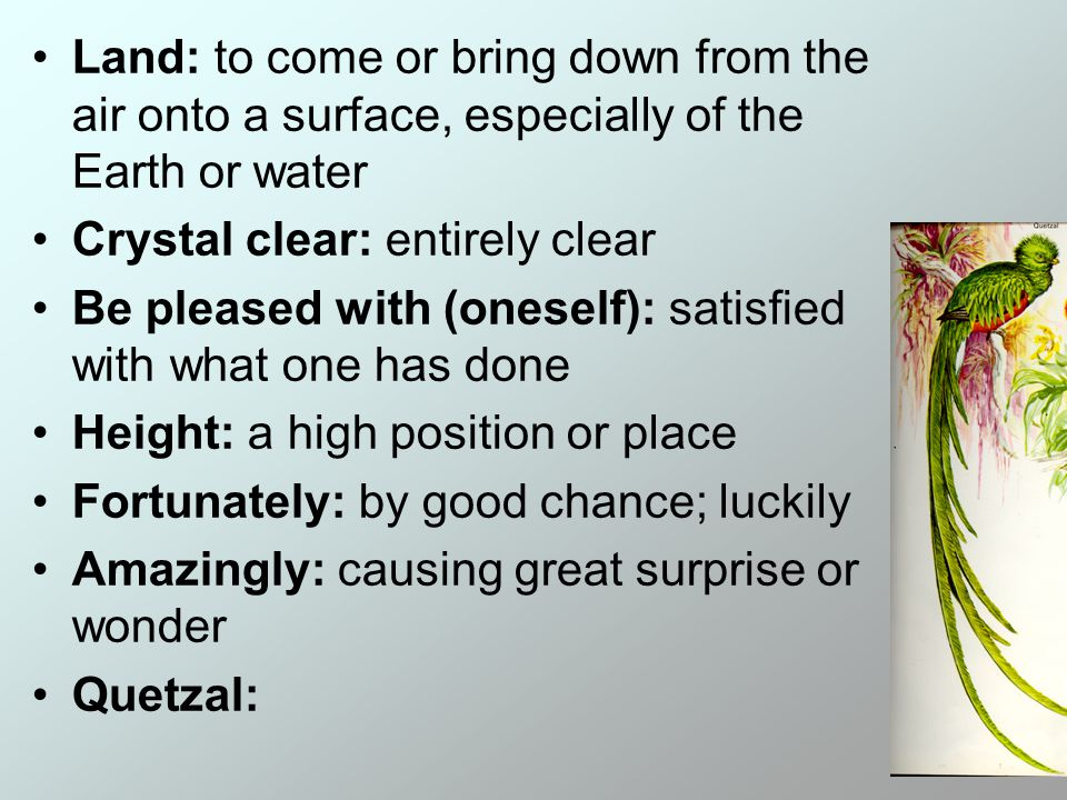 Land: to come or bring down from the air onto a surface, especially of the Earth or water Crystal clear: entirely clear Be pleased with (oneself): satisfied with what one has done Height: a high position or place Fortunately: by good chance; luckily Amazingly: causing great surprise or wonder Quetzal: