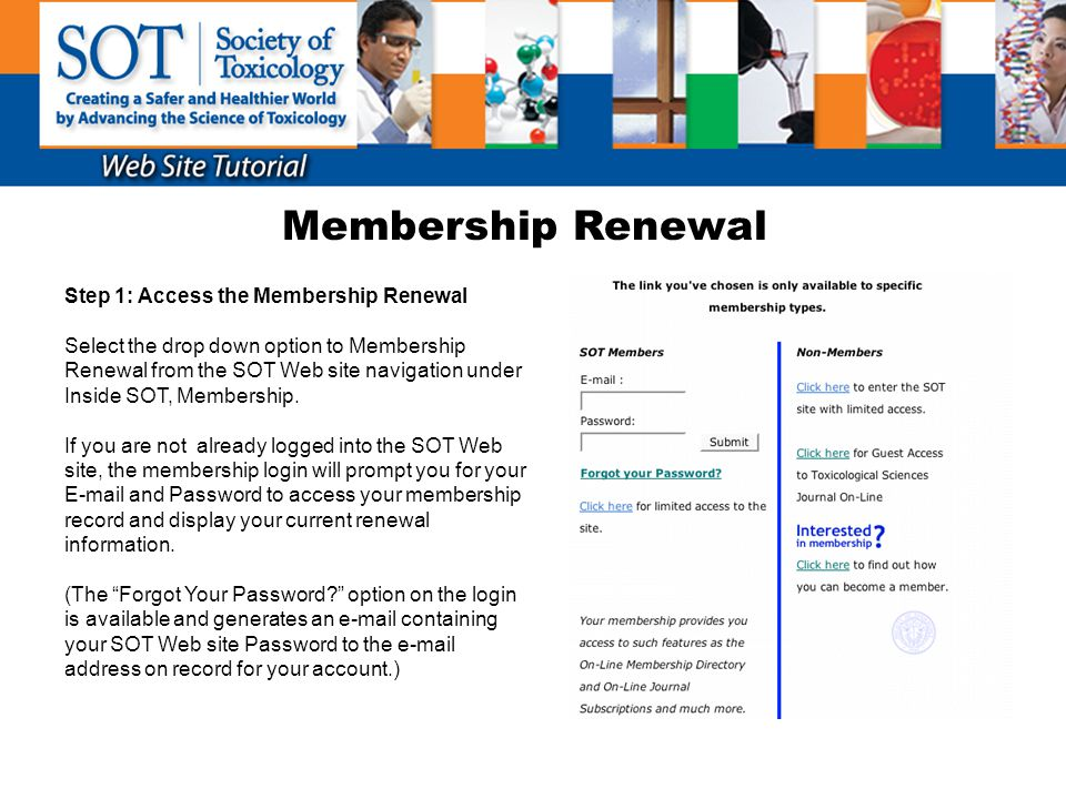 Membership Renewal Step 1: Access the Membership Renewal Select the drop down option to Membership Renewal from the SOT Web site navigation under Insi