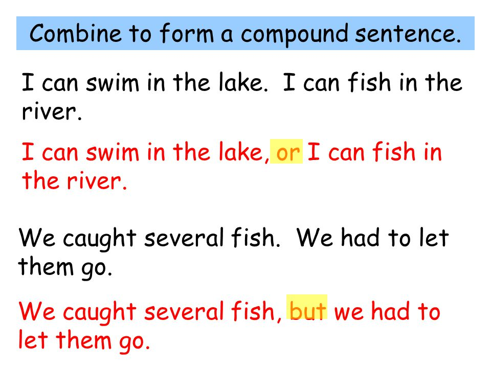 Combine to form a compound sentence. I can swim in the lake. I can fish in the river. I can swim in the lake, or I can fish in the river. We caught se