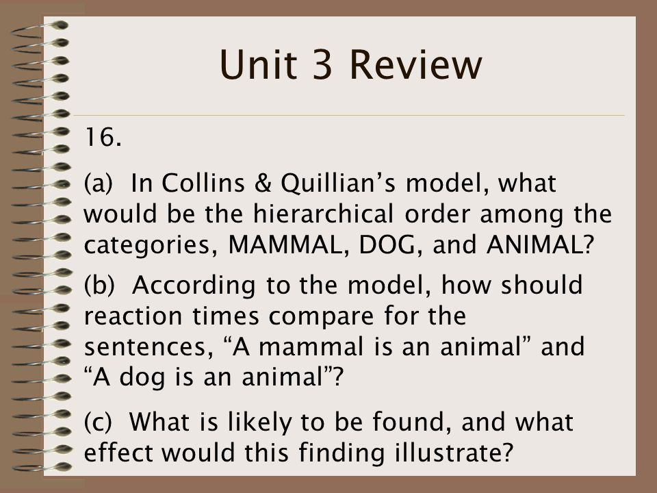 Unit 3 Review 16.