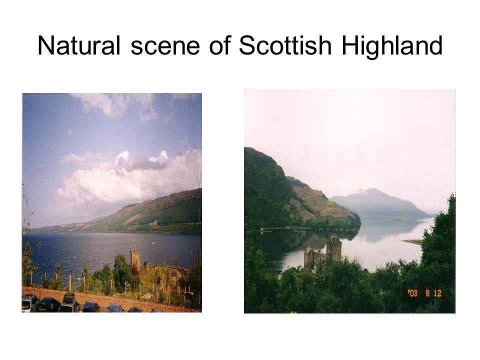 Natural scene of Scottish Highland