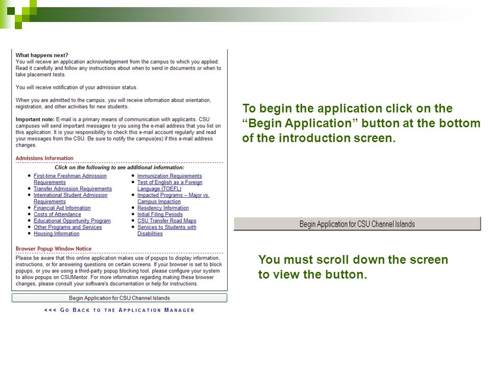 To begin the application click on the Begin Application button at the bottom of the introduction screen.