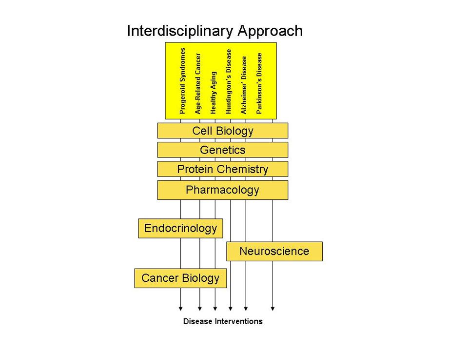 U54 Mechanism To establish Centers for Interdisciplinary Research in the Biomedical Sciences interdisciplinary research takes bits and pieces from the contributing disciplines and integrates them in ways that produce a new conceptual framework Solve complex problems that are refractory to traditional approaches