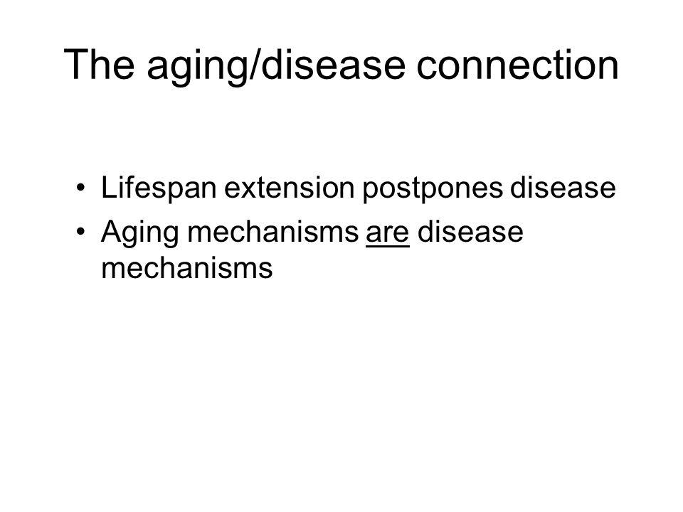 The aging/disease connection Lifespan extension postpones disease Aging mechanisms are disease mechanisms