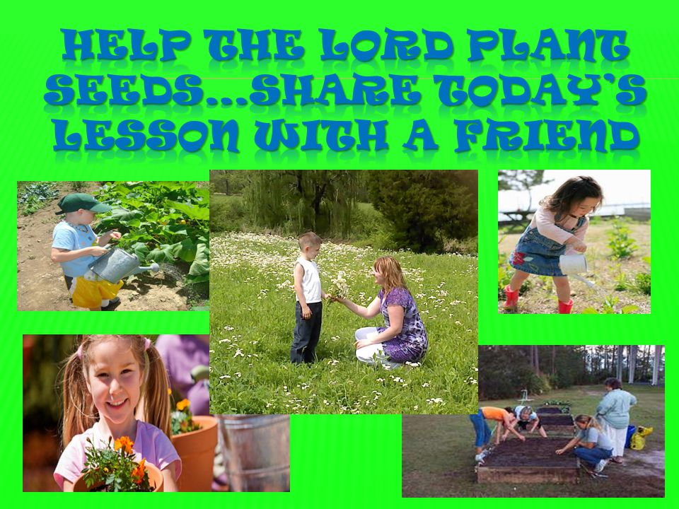  Heavenly Father, We want to be like the good soil. Help us to study Your Word and put it into practice in our daily life. We want to be like the goo