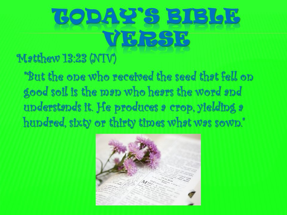  1. What verse are we learning today?  2. What do we need to grow a garden?  3. How is growing a garden like listening to God's lessons? lessons?