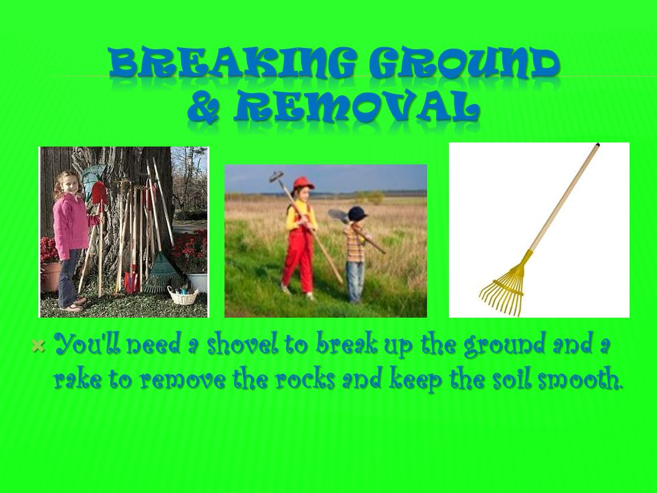  You ll need a shovel to break up the ground and a rake to remove the rocks and keep the soil smooth.