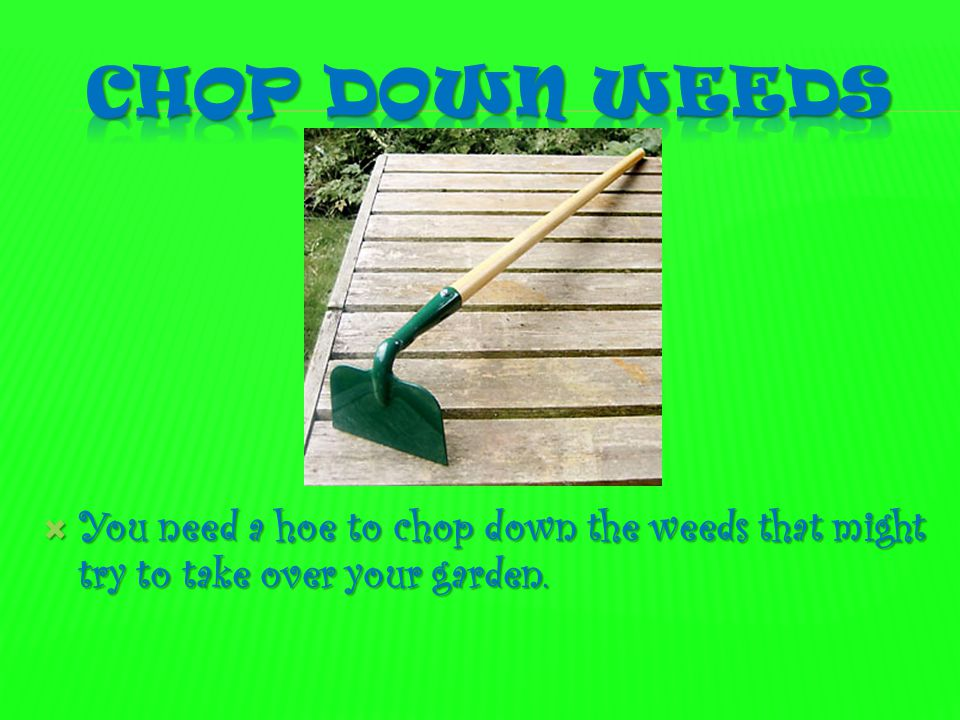  You need a hoe to chop down the weeds that might try to take over your garden.