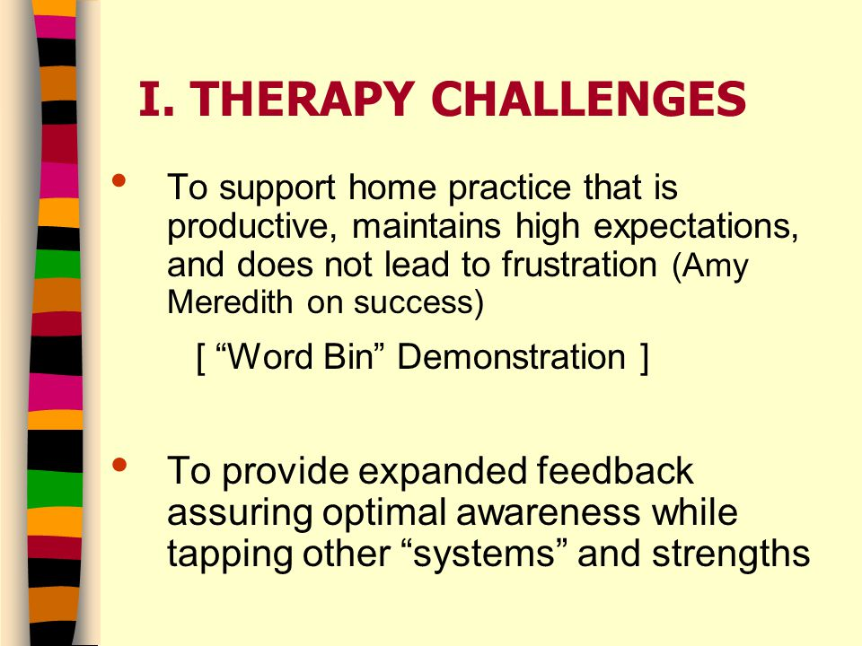 I. THERAPY CHALLENGES To support home practice that is productive, maintains high expectations, and does not lead to frustration (Amy Meredith on succ